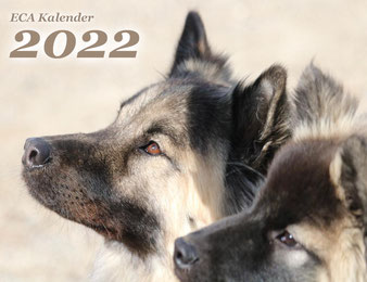 ECA Jahreskalender 2022