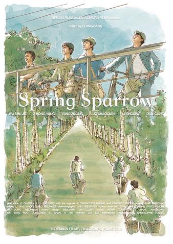 étalonnage video Spring Sparrow