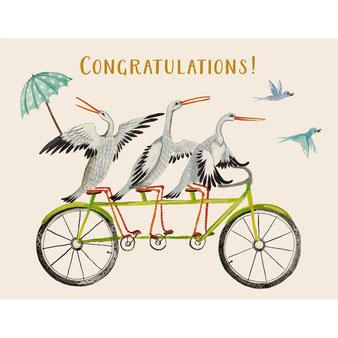"""Grußkarte """"Congratulations Stork Trio"""" aus der Papeterie von Hester & Cook"""