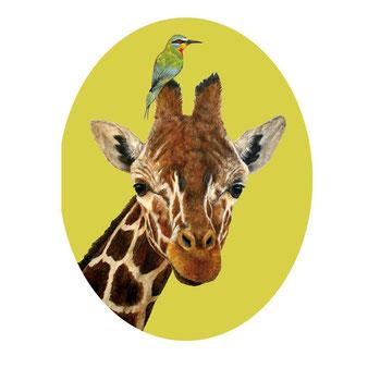 """Grußkarte """"Safari Friends"""" aus der Papeterie von Hester & Cook"""