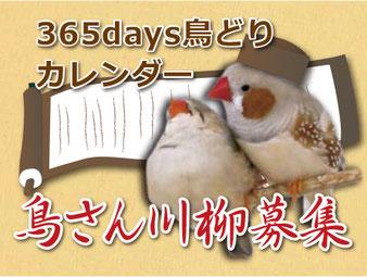 鳥さん川柳も募集しています。