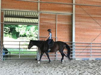 Training für pferdegerechtes Reiten im großzügigen Trainingsstall.