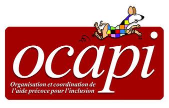 Logo projet OCAPI