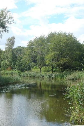 Park Uithof in 2020