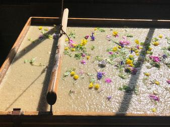 能登仁行和紙 壁紙 模様紙 自然素材