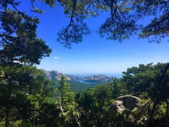 Vues panoramiques - Raid CORSE