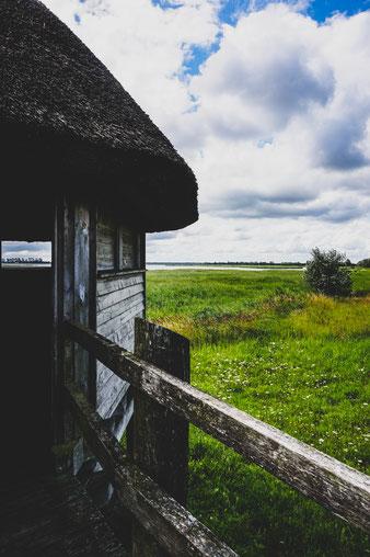 Fotografie – Ostsee Inspiration