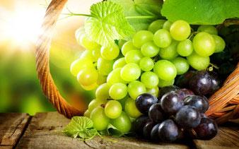 купить виноград для Подмосковья в питомнике Клин