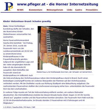 Horner Internetzeitung pfleger.at vom 1.2.2016