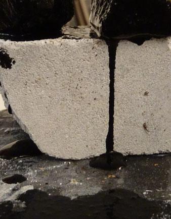 Harpillard pierre-charles