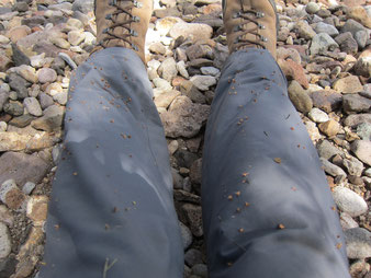 Don't forget your gaiters!