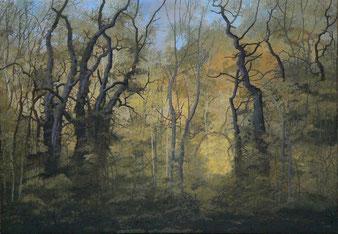 """Martin Guido Becker, """"Waldstück"""", 2008, Öl/Lwd, 70/100 cm"""