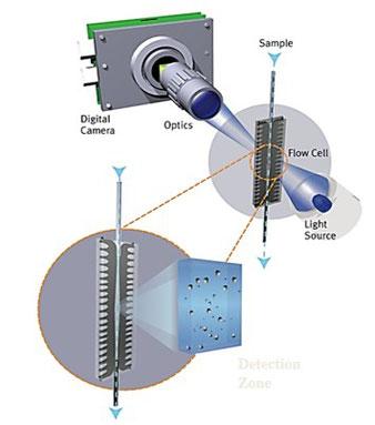 画像解析式 粒度分布 フローイメージング