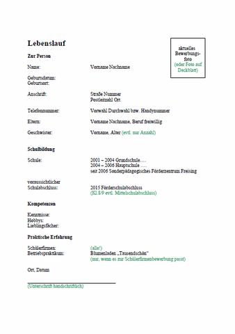 Diagnose Und Werkstattklassen 7 Bis 9 Sfz Freising