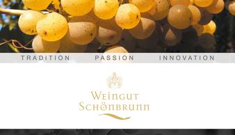 Infobroschüre Weingut Schönbrunn in deutscher und englischer Sprache
