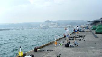 釣り場 勝浦港