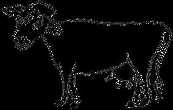 Bauernhof Therapie - Fortbildung tiergestützte Therapie