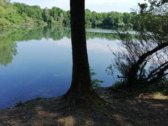 Dondorfer See