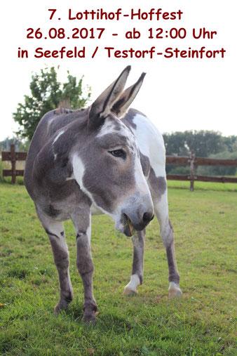 Foto: Lottihof für Kinder und  Tiere e.V.