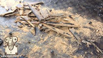 worm-eaten wood beech trunk vuitton xylophene treatment