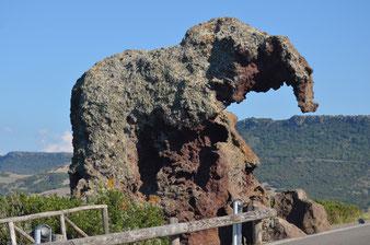 Rocca dell'Elefante (bei Castelsardo)
