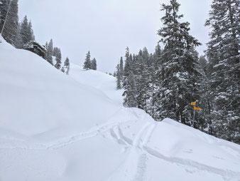Skitour, Wildgärst, Bundspitz, Berner Oberland, Grindelwald, Rosenlaui, Schwarzwaldalp