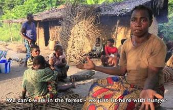 """""""Pigmeos"""" bayakas y baigas hablan sobre los abusos que sufren a manos de guardabosques, y el acoso para que abandonen sus tierras.  © Survival International"""