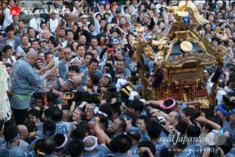 2013年 神田祭 'on! お祭りフォトギャラリー