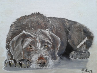 Hundeporträt, Acryl auf Leinwand, 18x24 cm, Fotovorlage: © DoraZett, Fotalia