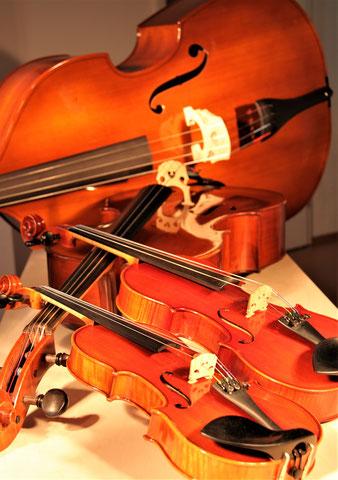 Violine, Viola, Cello und Kontrabass (von vorn nach hinten)