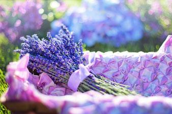 46 ans de mariage : Offrir un bouquet de Lavande
