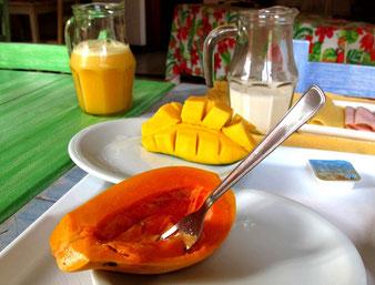 mein tägliches Frühstück in den Pousada´s