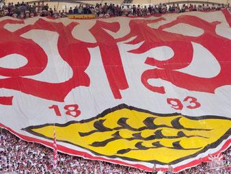 VfB Stuttgart. Foto: Sebastian Kahnert/ARCHIV