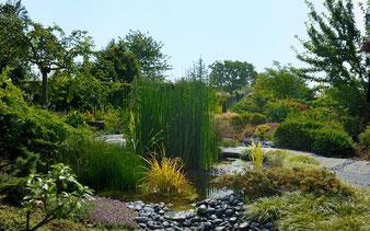 Jardin Amoena. (Photo Alain Tessier)