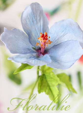 Hibiskus aus Wafer Paper | Floralilie