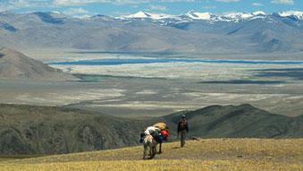 Thomas Zwahlen von Himalaya Tours