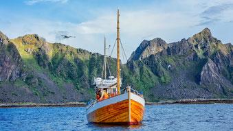 Neuigkeiten und Updates von Hurtigruten