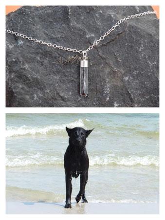 Silberschmuck Hund