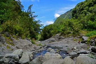- Rivière Langevin - Île de la Réunion -