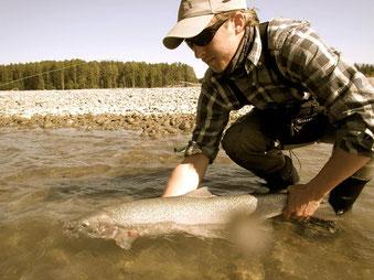 FLiegenfischen, BC, Lachs, Steelhead