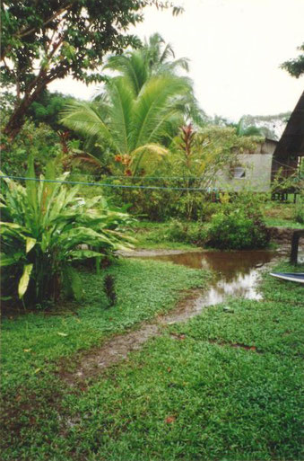 Die »Hauptverkehrsader« des Dorfes Tortuguero steht nach einem Tropensturm unter Wasser