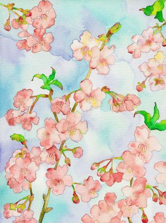 2016年作品「春よ来い」