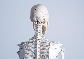 首の骨と骨の間隔が狭くて腕が痛い