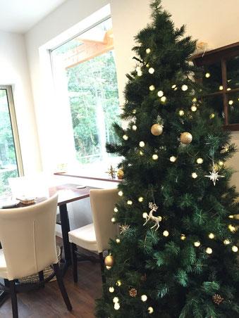 クリスマスツリーがイグレックに出現いたしました!今年はポンポンのライトがキュートです。