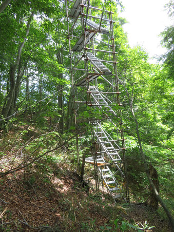 謎の鉄塔。
