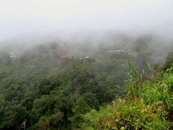タインギンは今日も霧だった(10月28日)。
