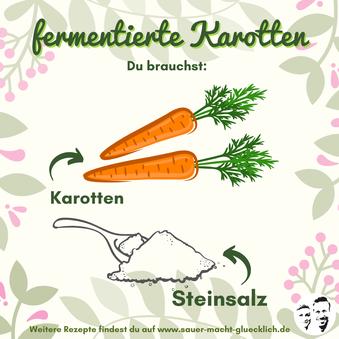 Fermentierte Karotten - Einfach & Lecker