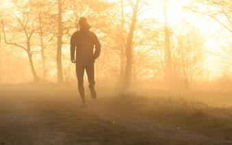 Jogger im Herbstnebel (Fotolia)