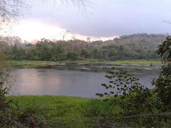 Lago Miraflores