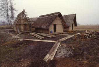 Die steinzeitliche Moorsiedlung Taubried im Federseemuseum Bad Buchau im Aufbau. (Foto Privat K. Banghard).